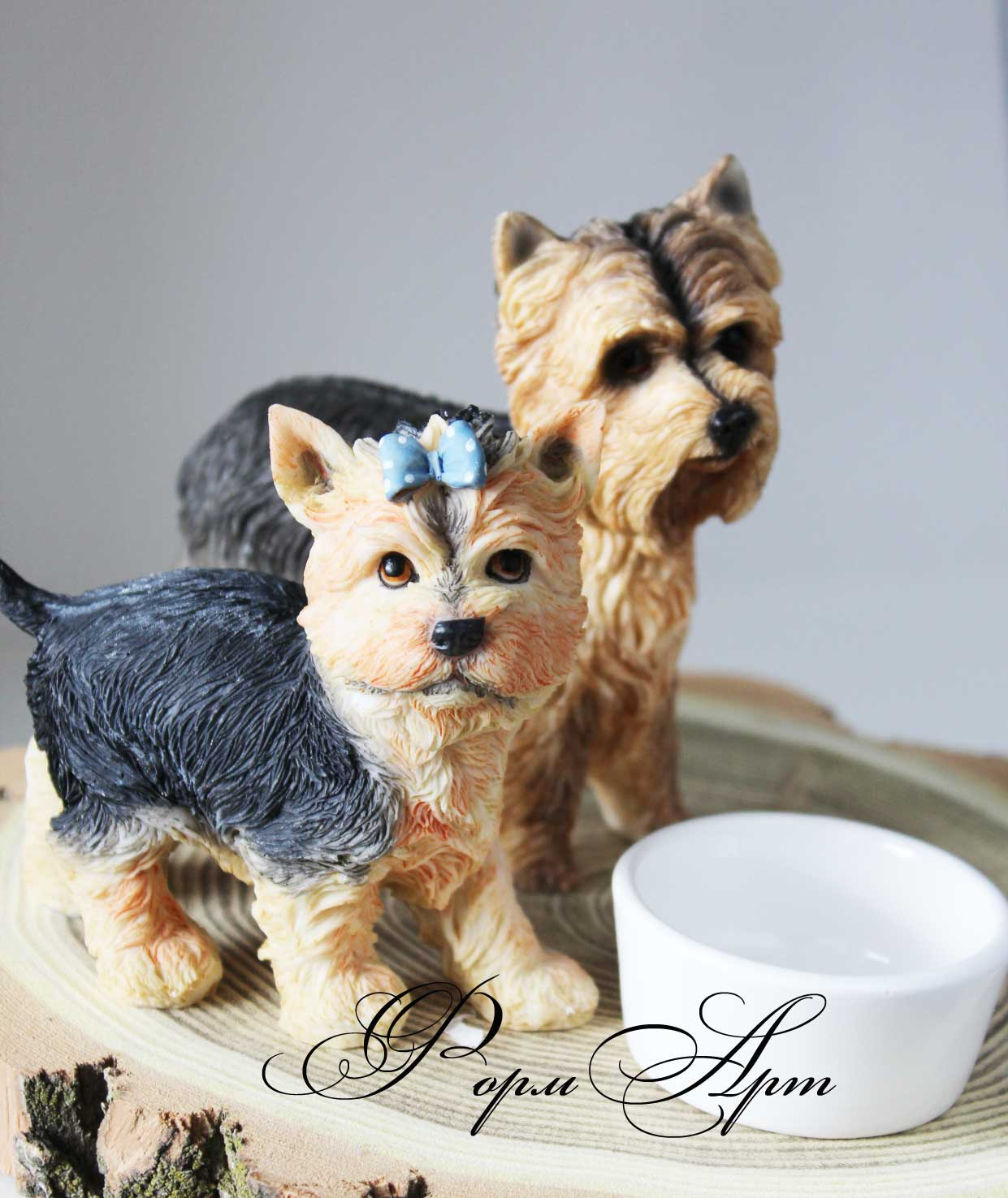 Gallery images and information: yorkshire terrier 7 kilos